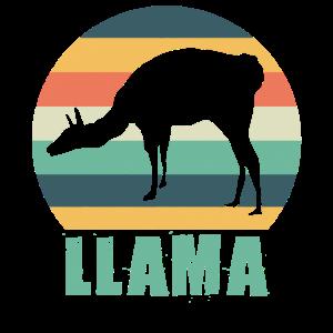 Lama Alpaka Retro Vintage