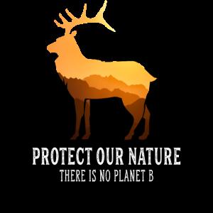 Naturschutz Hirsch