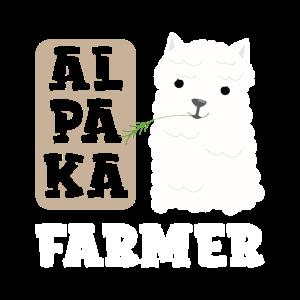 Alpaka Farmer Alpakazucht Dorf Alpaka Züchter Lama