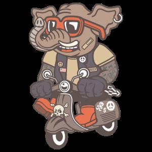 Elefant Rollerfahrer