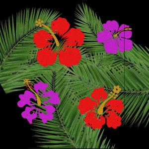 maske Hawaii