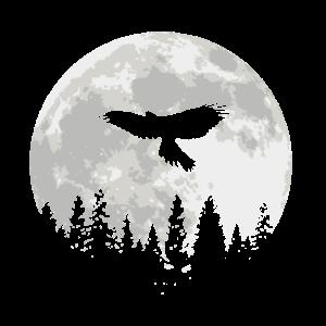 Falke Greifvogel Falkner Falknerei Beizjagd Mond