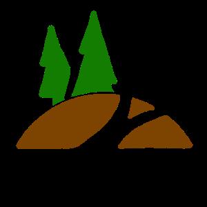 Nadelbaum Tannenbaum Wald Tanne Weihnachtsbaum