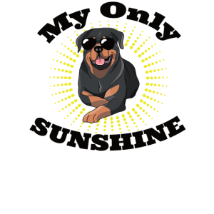 My Only Sunshine Dog,Rottweiler Sonnenschein