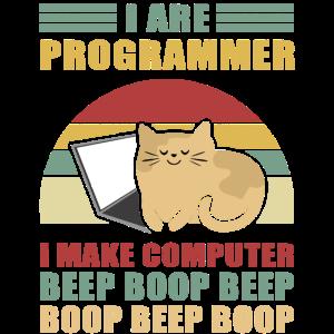 Programmierer Geschenk Admin Computer Informatiker