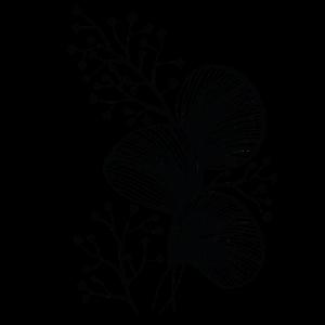 leaves and berries black