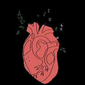 Flower Heart Lineart