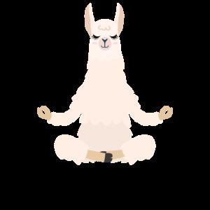 Meditation Lama Namaste Yoga Tier Alpaka Spruch