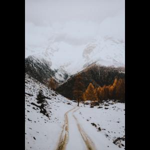 Schneebedeckte Bergstraße