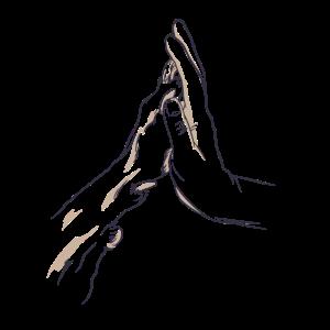 Pfote und Hand