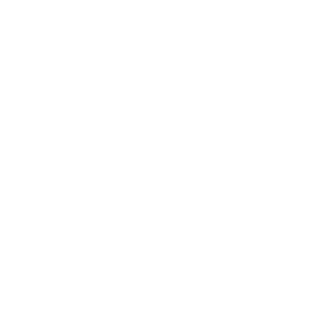 Original Januar 1991 Legende