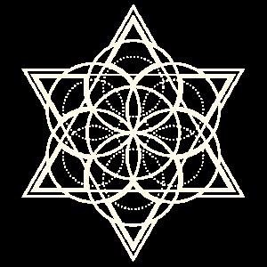 Blume des Lebens Stern