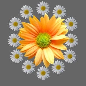 Margeriten mit einer orangen Chrysantheme, Blumen
