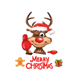 cooles Weihnachtsoutfit Partnerlook Rudolph Rudolf