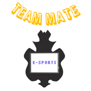 Team Mate: E-Sports, E-Sport Community
