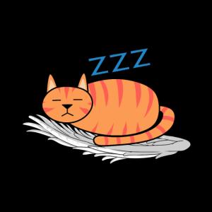 Müde Katze himmlisch schlafen Engelsflügel