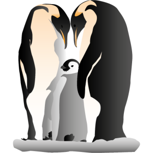 Familie der Kaiserpinguine
