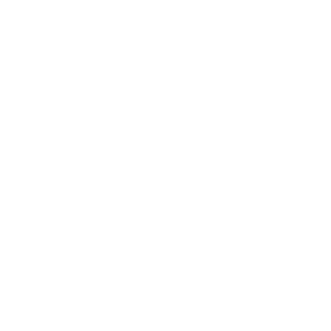 I'm Not Perfect But I'm A Social Worker Gift