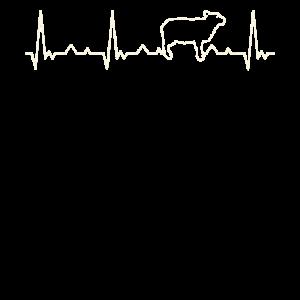 SchafEKG HerzSchlag
