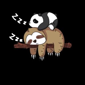 Netter Panda Schlafen auf Faultier Design Faultier