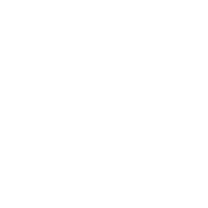 geometrische Fox Fox Besitzer Geschenk