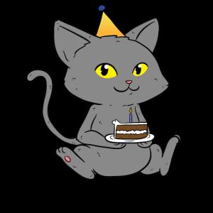 Bday Cat