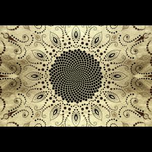 Fibonacci, Spirale, Sonnenblume, Natur, Geometrie