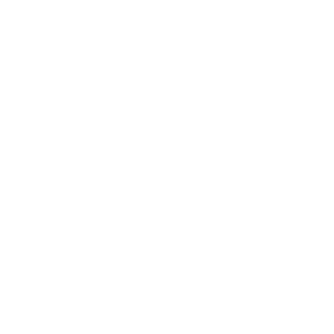 2021 Ornamtent