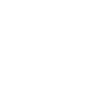 Affentheater Gorillashow   Drama Queen