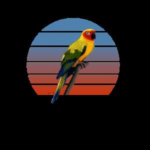 Vogelmotiv Sonnensittich Zeichnung Vogel Papagei.p