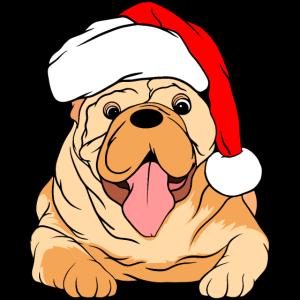 Hund Mütze lustig Weihnachten Weihnachstmann Santa