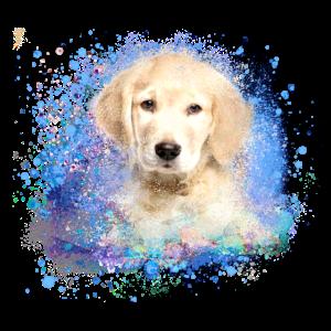 Labrador,Hund, Illustration,welpe,golden retriever