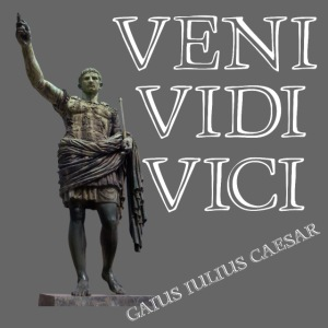 Giulio Cesare, veni vidi vici