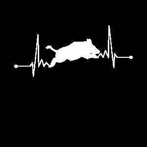 Wildschwein Jagen Jäger Herzschlag Schwarzwild