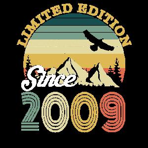 Vintage 2009 Geburtstag Retro Jahrgang Geschenk