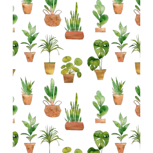 Blumen Rosen Watercolor Liebe | Kaktus | Pflanzen