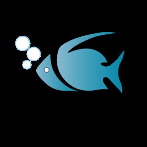 Fish, aquarium, aquarium hobby