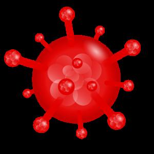 Coronavirus in 3D