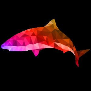 hai polygon bunt fisch