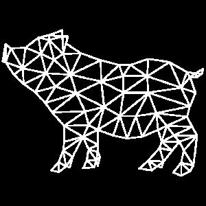 pig polygon schwein sau
