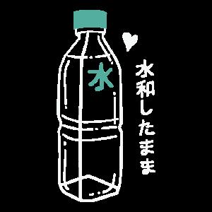 VAPORWAVE AESTHETIC: Harajuku Water Bottle