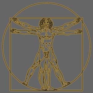 Hombre de Vitruvio. Leonardo Da Vinci