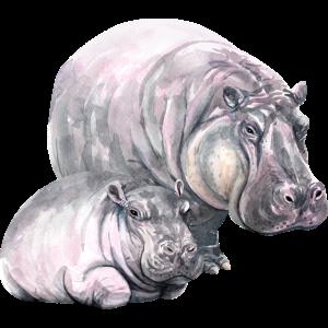 Nilpferde watercolor