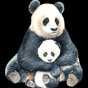 Panda Mutter und Kind watercolor