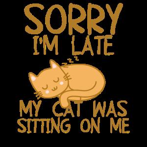 Tut mir leid, dass ich zu spät bin. Meine Katze saß auf mir