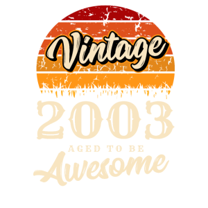 Awesome 2003 Geburtstag Retro Jahrgang Geschenk