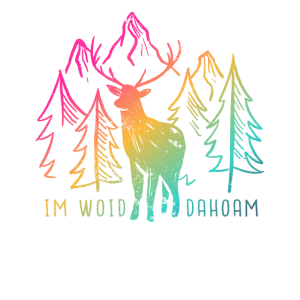 Wald Wandern Natur bayrisch Bayern Outdoor
