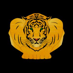 Tiger stürzen