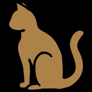 Stubentiger Hauskatze Katze