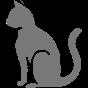 Chat Cat Katze Seitenprofil